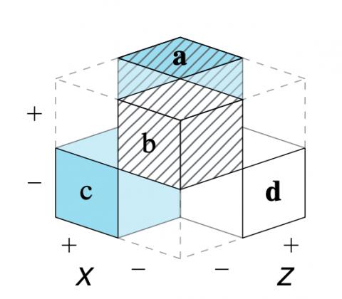 2x2 matrix: Partial cube model (Neth et al., 2021)